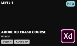 Adobe XD: Ускоренный Курс