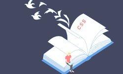 CSS Layout и Анимации