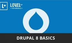 Основы Drupal 8