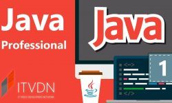 Java Professional