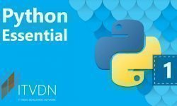 Python Essential