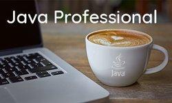 Java Professional v2