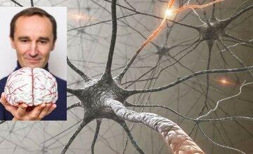 Нейропластичность: как восстановить мозг