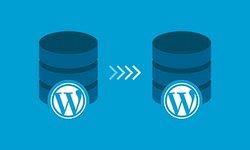 Полное руководство по миграции WordPress