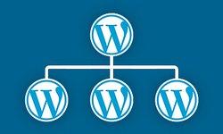 Полное руководство по WordPress Мультисайт (Multisite)