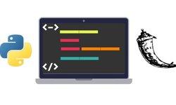 Python и Flask Bootcamp: Cоздавайте веб-сайты с помощью Flask!