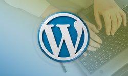 Разработка плагинов для WordPress - создаем14 плагинов