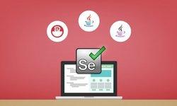 Selenium WebDriver с Java - от новичка до ниндзя + интервью