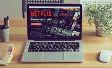 Создайте клон Netflix с нуля: JavaScript PHP + MySQL