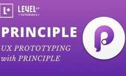 UX прототипирование с Principle