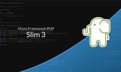 Валидация с помощью Slim 3