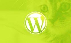 WordPress для начинающих: создайте сайт шаг за шагом