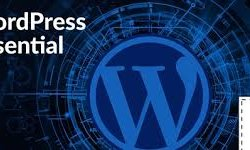 WordPress Essential