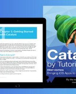 [Книга] Руководство по Catalyst