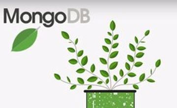 Основы MongoDB