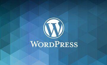 Полный бизнес-курс по WordPress