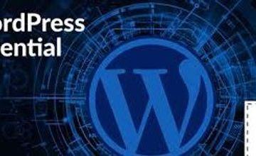 WordPress Essential